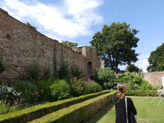 Wilton Castle: Castle walls