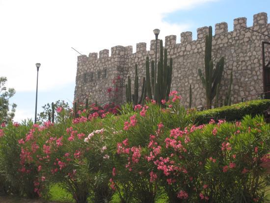Hotel Posada del Hidalgo: Mirador