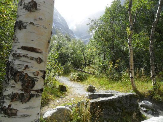 Loen, Νορβηγία: Het voetpad naar Kjenndalsbreen Glacier