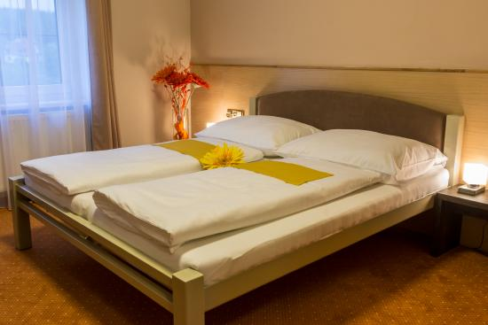 Hotel Luznice