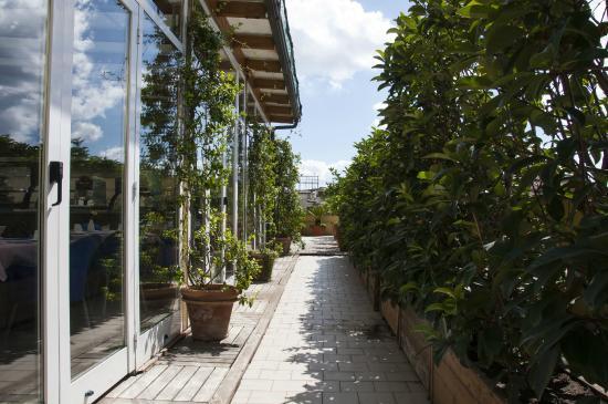 BEST WESTERN Hotel Plaza : roof garden