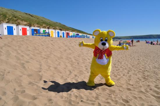 Woolacombe Sands Holiday Park : Woolly Bear loves the beach huts!