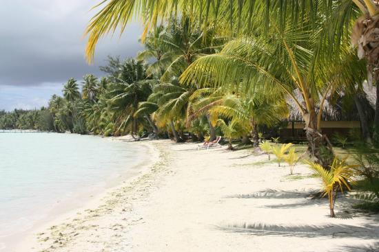 Eden Beach Hotel Bora Bora: Strand vor Bungalows