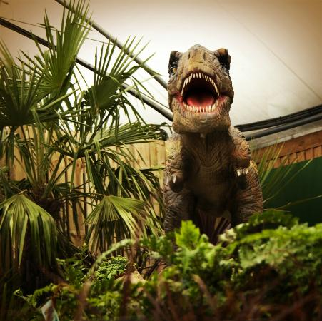 The Dinosaurs At Brigg Garden Centre Picture Of The Vineyard Restaurant Brigg Tripadvisor