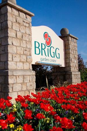 Welcome To Brigg Garden Centre Picture Of The Vineyard Restaurant Brigg Tripadvisor