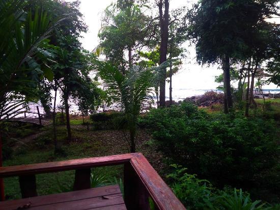 Bai Lan Bay Resort: Вид из номера