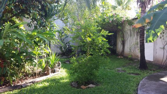 Villa Escondida Cozumel Bed and Breakfast: The Yard