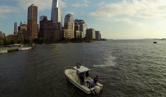 New York Harbor Sportfishing