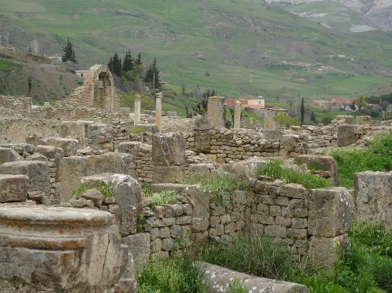 Djemila, Algeria: Site magnifique