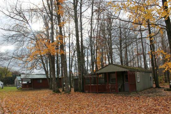Forest Ridge Campground & Cabins: Adirondack Cabin/ October 2014