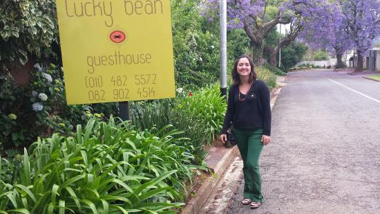Lucky Bean Guesthouse: Entrada e rua florida com os jacarandás