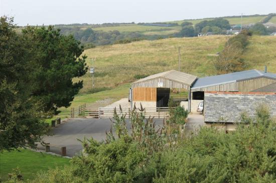 Lower Campscott Farm Holiday Cottages: Farm View