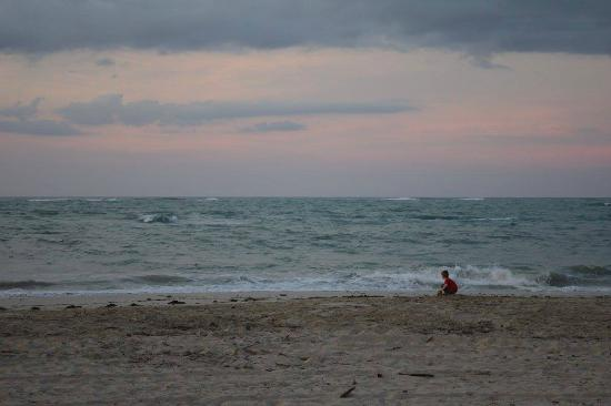 Blue JackTar: View of the ocean at sunset