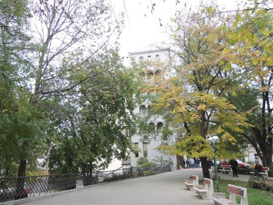 Dunavska Gradina