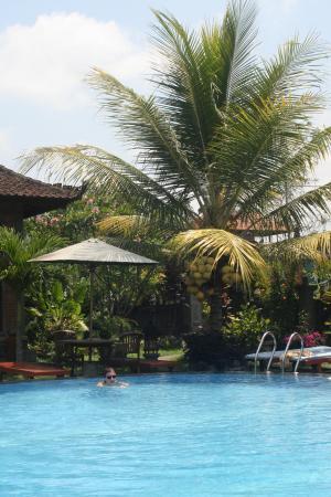 Sugars Villas: The Pool