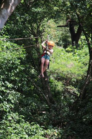 The Congo Trail Canopy Tour: Our 8 year old