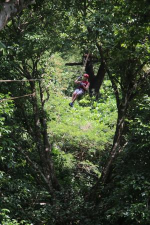 The Congo Trail Canopy Tour: Please don't end!