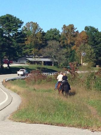 Big South Fork Lodge & Horse Campground: Great riding and lodging for riders!
