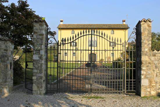 Villa Domus Magna : A view from the front gate