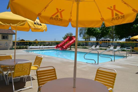 Lena KOA: Fun Swimming Pool