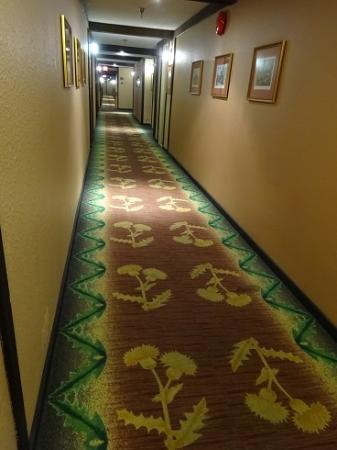 Abercorn Inn Vancouver Airport: Scottish all the way down the hall