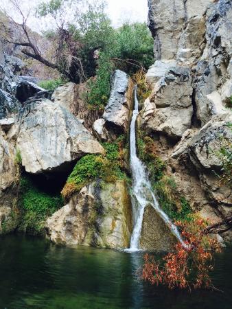 Parque Nacional del Valle de la Muerte, CA: Darwin Falls