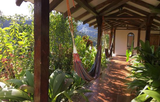 Hacienda Primavera Wilderness Ecolodge: View from the Terrace