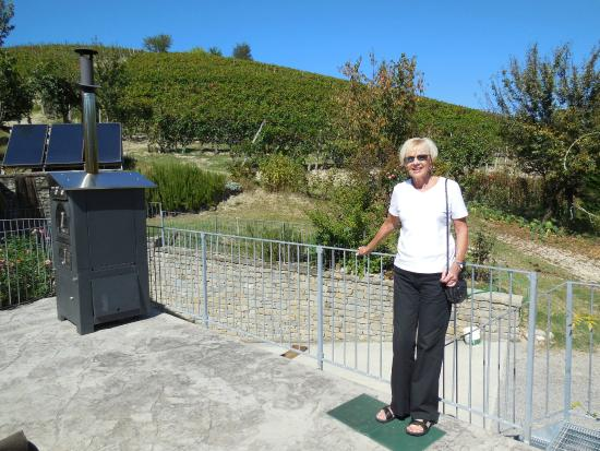 Agriturismo Casa Ressia: Verandah overlooking vineyards