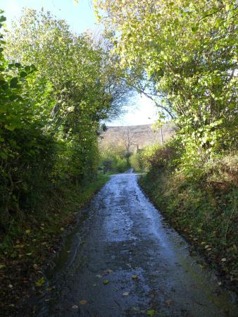 White Haywood Farm B&B: Roadway up to the bottom of The Cats Back ( Black Hill)