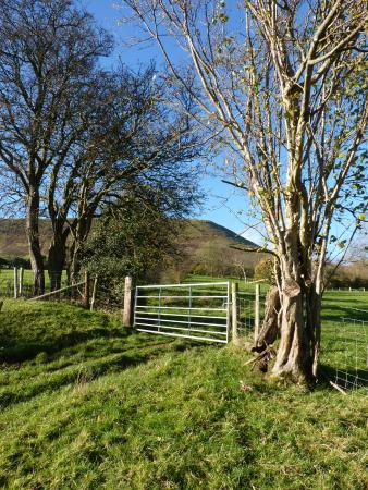 White Haywood Farm B&B: Just one of our many views of The Black Mountains