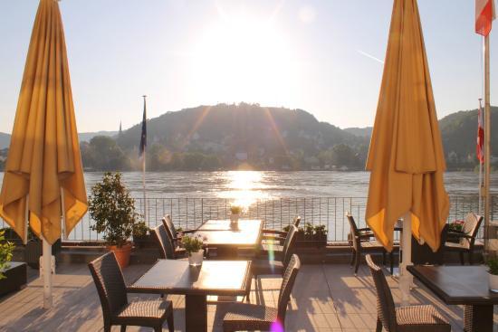 RheinHotel ARTE: Hochwasser am Rhein