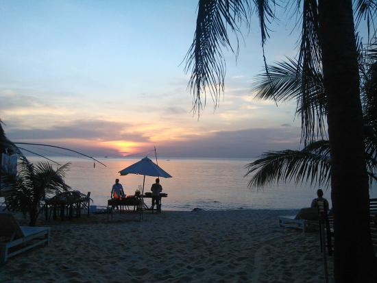 Viet Thanh Resort: Вид с крыльца домика