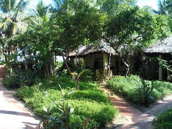 Viet Thanh Resort: В глубине территории