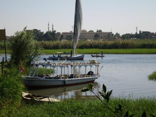Al Baeirat Hotel : Blick aus dem Garten auf den Nil