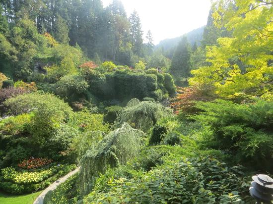 Beautiful Place On Vancouver Island Picture Of Butchart Gardens Central Saanich Tripadvisor