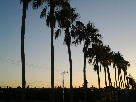 Hacienda Del Sol: Sunset