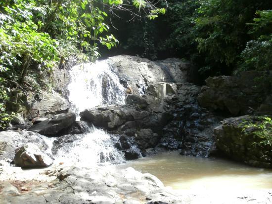 Fiji Palms Hotel Phuket  46    U03365 U03362 U0336