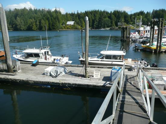 Bamfield Lodge and Cottages: Boats back at the lodge