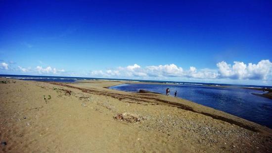 Pacific Recreation Kamp: beach