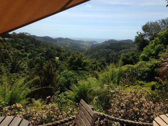 Helena Bay Cafe: An amazing view while you coffee