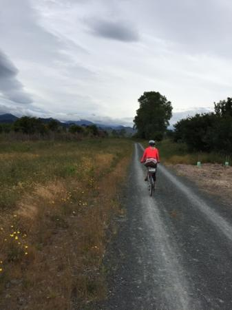 The Gentle Cycling Company: gentle cycling