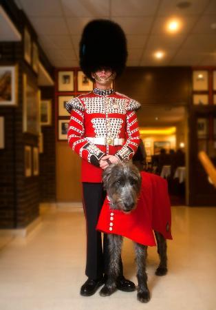 The Union Jack Club: Irish Guard & mascot in UJC.