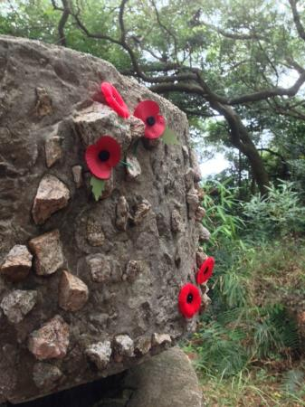 Walk Hong Kong: Poppies on WW2 Walk