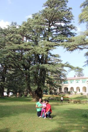 Nainital Governor's House: Rajbhavan