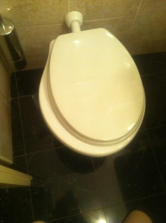 Hotel La Rosetta: bagno: dettaglio della tavoletta del water fuori misura