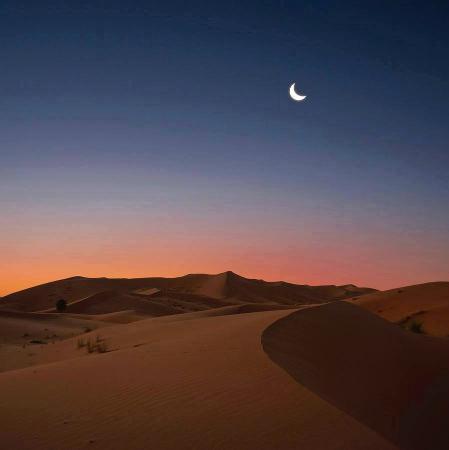Desert Authentique Maroc - Day Tours