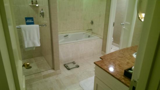 Four Seasons Resort and Club Dallas at Las Colinas : Bathroom