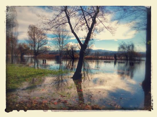 Lake Varese bicycle trail: Lago di Varese, Schiranna, dopo l'esondazione