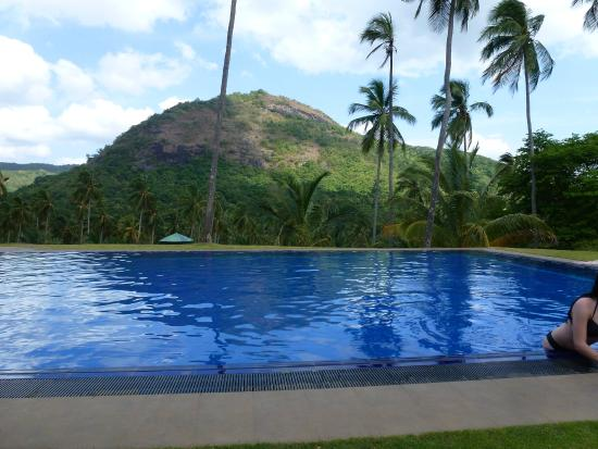 Brook Boutique Hotel & Spa : Glorious pool