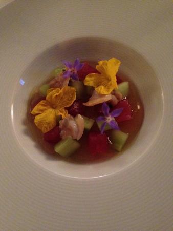 cucina cereda tonno cetrioli e i suoi fiori in gelatina agrodolce